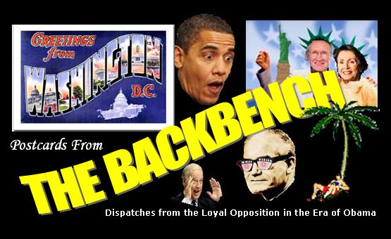 Postcards from the Backbench