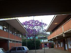 Escola Estadual Alberto Azevedo