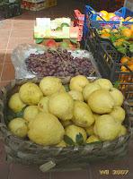 Amazing big lemon fruit