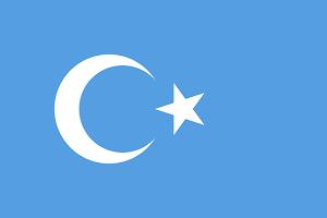 Uyghur Freedom