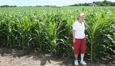 Photo of Pat Williams in corn field.