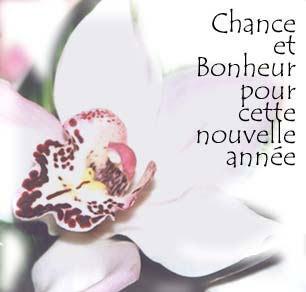 You, Me & Marjorie: BONNE ANNéE!
