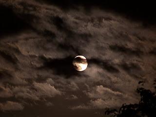 Chronique de l'Ombre du Jeudi 17 Février 2011 Lune