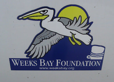 Weeks Bay Area River Cleanup