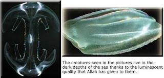 Makhluk Kecil Bercahaya Paling Terkenal Di Dunia [ www.BlogApaAja.com ]