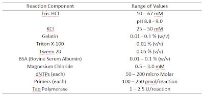 PCR components