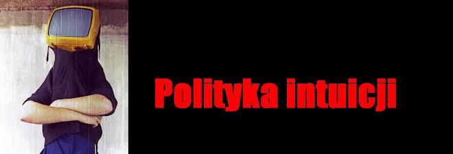 Polityka intuicji