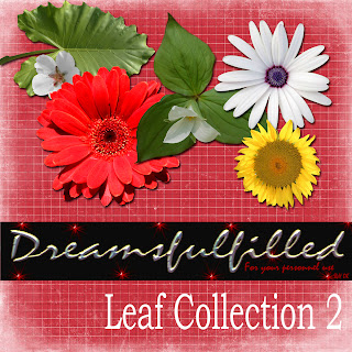 http://feedproxy.google.com/~r/Dreamsfulfilled/~3/4kvgQ34mwqE/leaf-collection-2.html