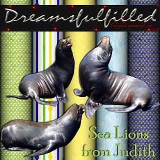 http://feedproxy.google.com/~r/Dreamsfulfilled/~3/sqD0tBp9C-k/sea-lions.html