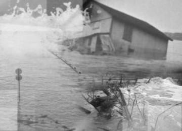 Pemerintah dan Wahana Lingkungan Hidup (Walhi) sepakat banjir bandang