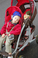 Stroller Napping