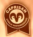blog de caprisan