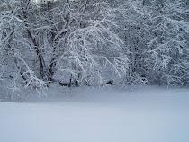 Det är så fint med snö...