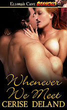 WHENEVER WE MEET by Cerise DeLand