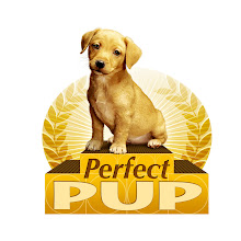 Looking for the Perfect Pup?