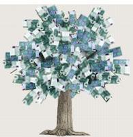 Bani pe post sau cum vom deveni bloggeri profesionisti