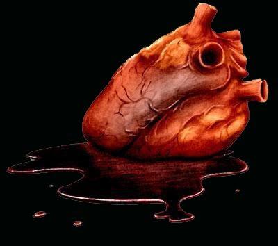 http://2.bp.blogspot.com/_hKOdTFZsTY0/Sqb64pNnpTI/AAAAAAAAQP0/FIxltzIpNmY/s400/organs.jpg