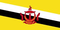 علم بروناي