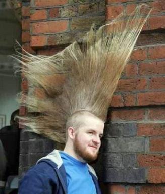 http://2.bp.blogspot.com/_hL8KarsFuj8/SVqWICdhMjI/AAAAAAAAARI/mRrmmkNfGsU/s400/funny+hair+(2).jpg