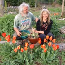 Tender Spring Greens...