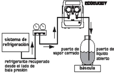 Los Gases Refrigerantes on wiring diagram for copeland compressor