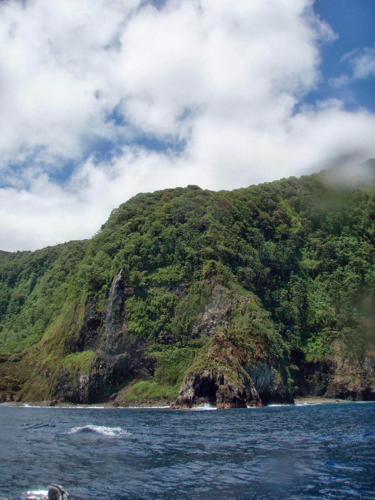 ココ島の画像 p1_36