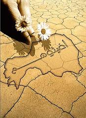 مأساة النيجر