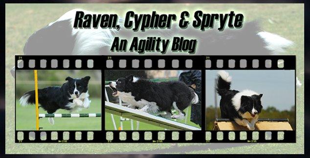 Raven, Cypher & Spryte - An Agility Blog
