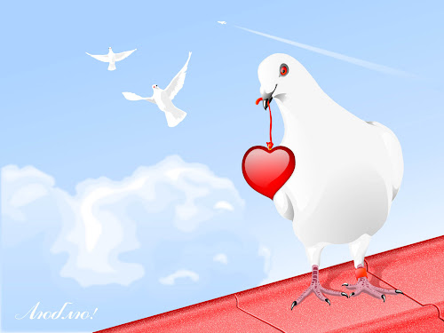 Dove With Heart Love wallpaper