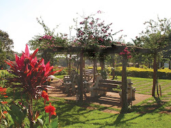 """Parque Ecológico """"Vale do Sol"""""""