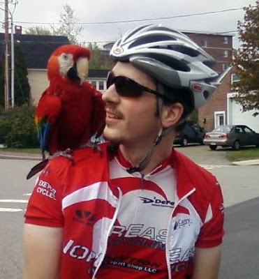 parrot macaw global warming portsmouth new hampshire bicycling bikes