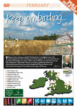 Go Birding Index