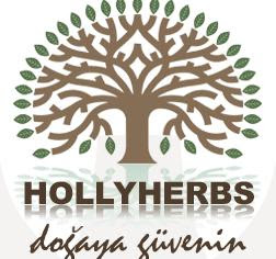 HOLLYBERS