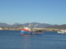 COQUIMBO    CUARTA REGION    CHILE