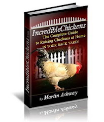 Incredible Chickens, The Complete Guide