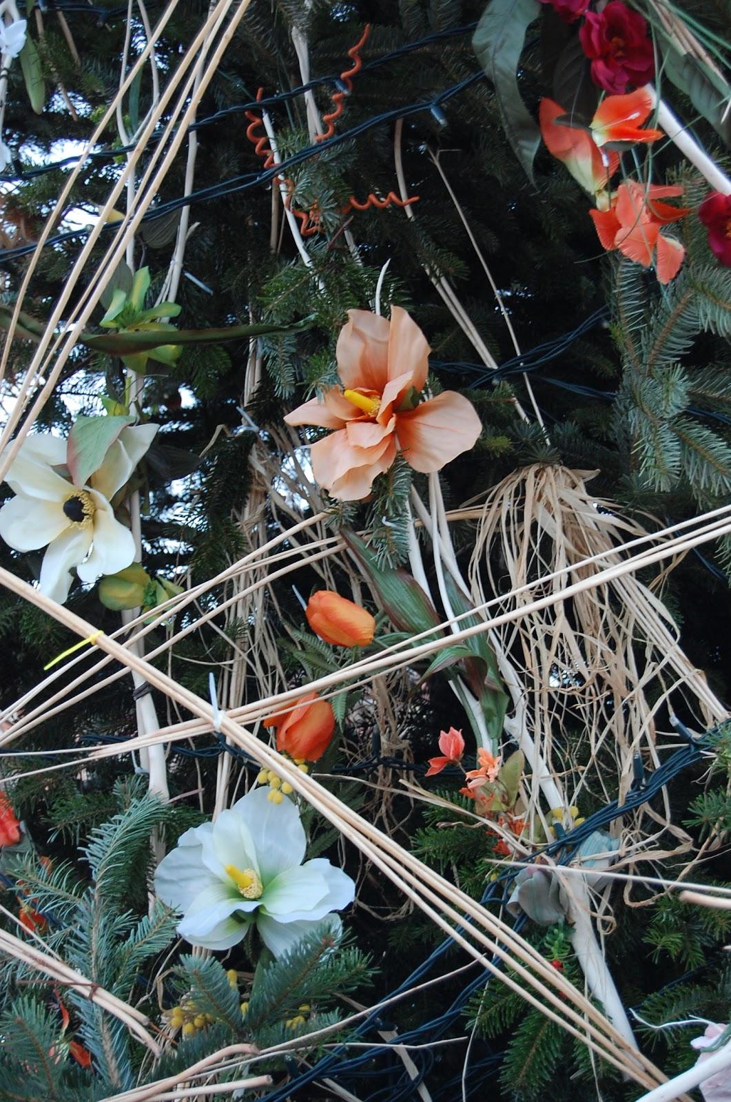 Andar y ver arbol de navidad plaza mayor de medina del campo - Ver arboles de navidad ...