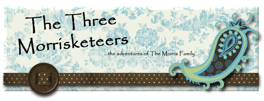 The Three Morrisketeers