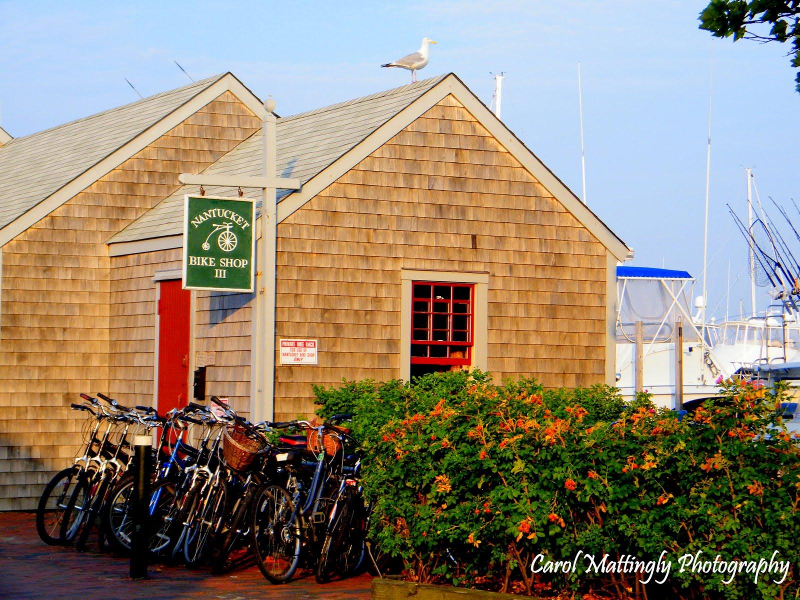Carol Mattingly Photography: Cape Cod Trip 2010, Nantucket ...