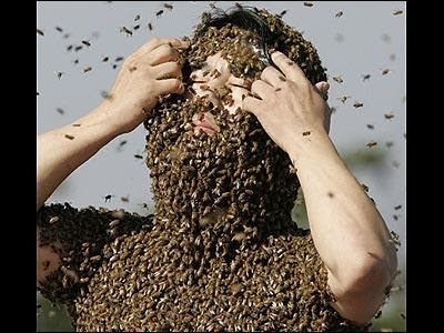 Homme abeilles