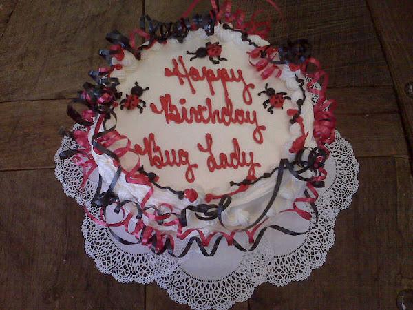 LadyBug_Birthday_Cake317.jpg