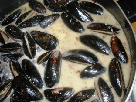 how to cook mussels with antipesto