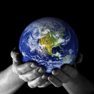 Notícias Ambientais da Folha online