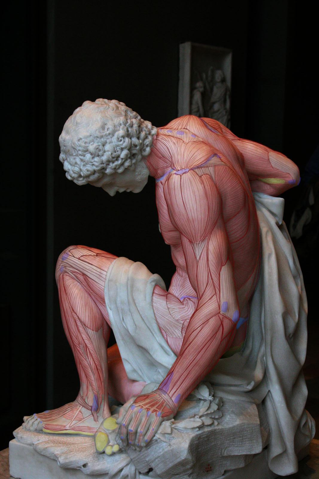 http://2.bp.blogspot.com/_hZ-pUKblTvg/TGz8tDa_NvI/AAAAAAAAAMg/qiaoK7tismw/s1600/louvre_sculpture-2.jpg