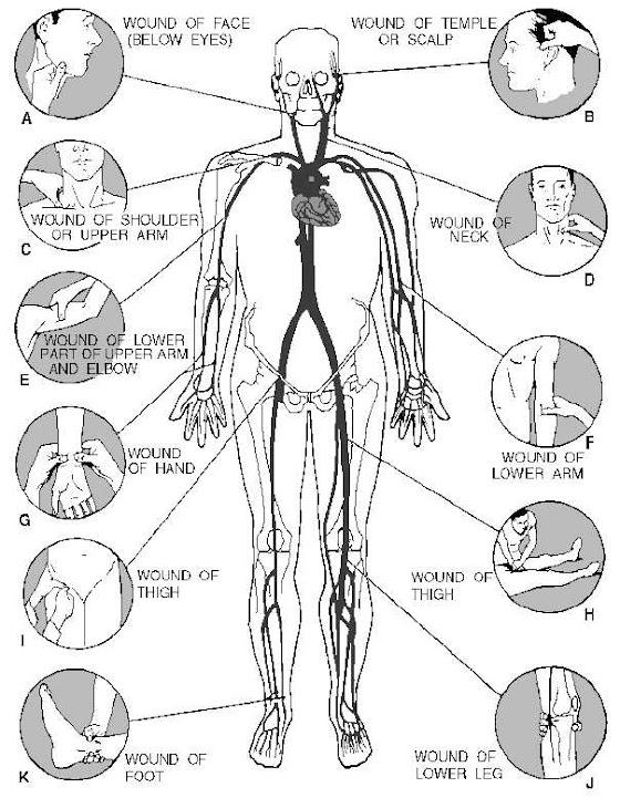 Puntos Para Tomar Pulso
