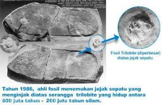 fosil Dinosaurus dan Manusia Masa Lalu
