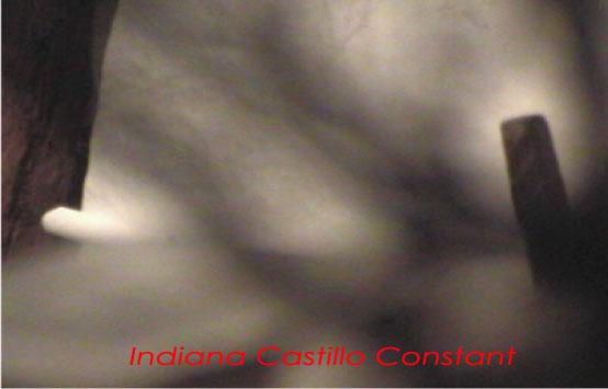 Indiana Castillo Constant