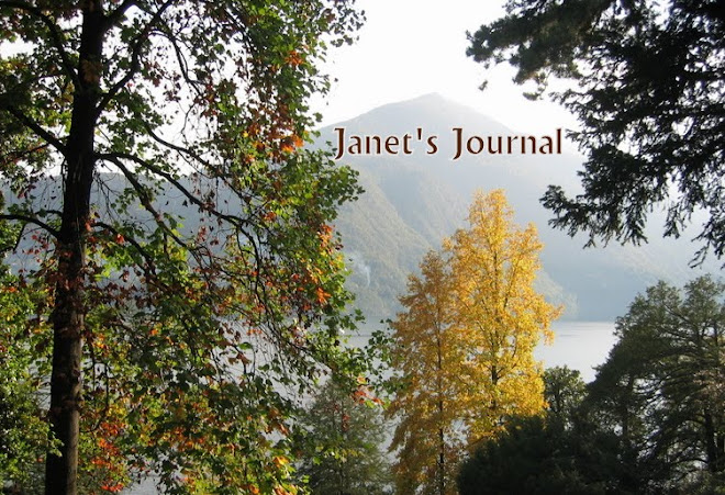 Janet's Journal