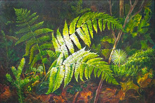 Wood Fern Dance