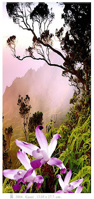 Kauai, de Salvador Manzanera