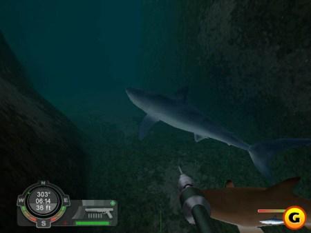لعبة إصطياد القرش Shark Hunting Great White game,بوابة 2013 shark3.jpg